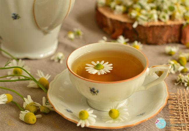trà hoa cúc 6